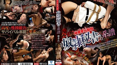 CMC-182 The Chairman's Treasure Trove Of Sex Toy Animals The Genealogy Of The Slave Secretary Rei Tokunaga